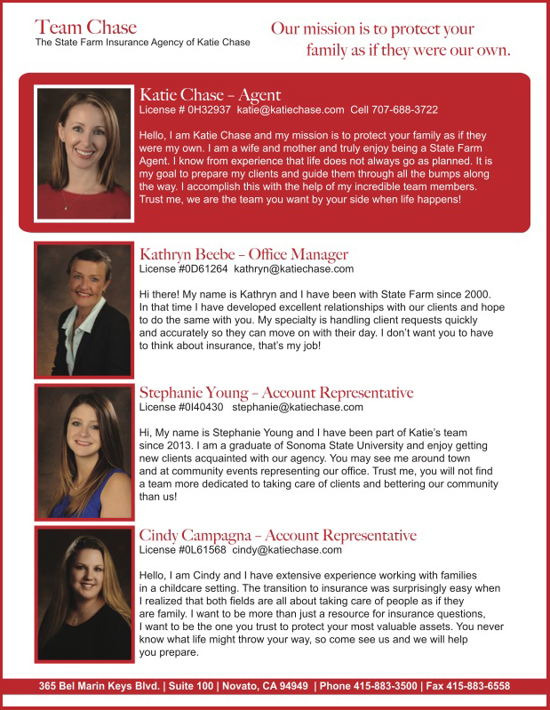 Katie Chase State Farm Insurance Agent Flier