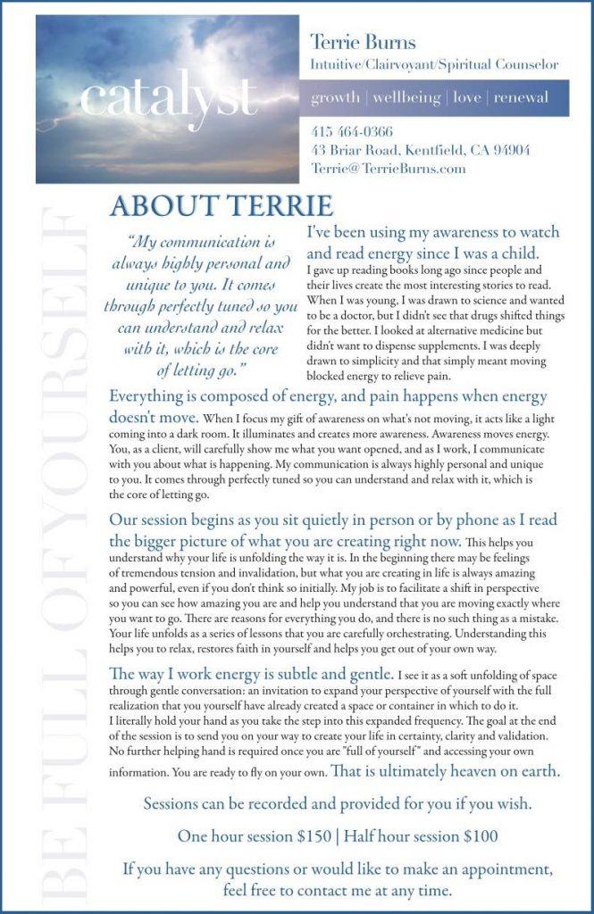 Catalyst  Terrie Burns Poster Advertisement