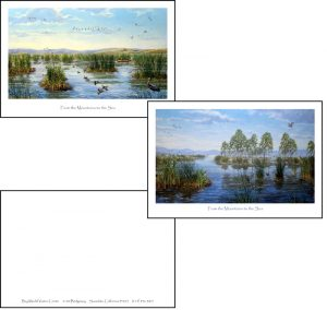 From the Mountains to the Sea Postcards