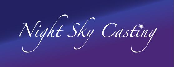 Night Sky Casting Bay Area Logo Design