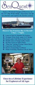 SeaQuest Rack Card