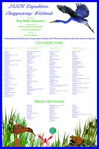 wetland donor poster