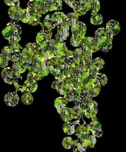 Wine's Substance I | Digital Art | Susan Searway-Fertig