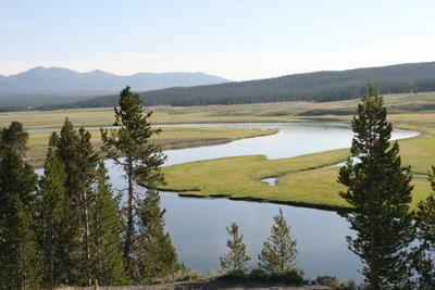 Yellowstone National Park 19