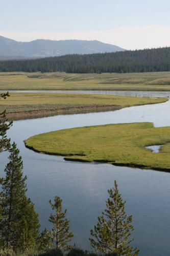 Yellowstone National Park 12