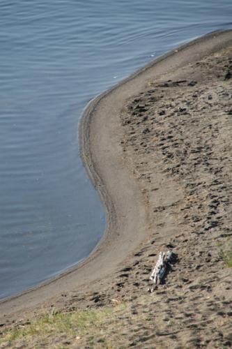 Shoreline 28