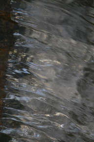 Water 13